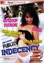 Public Indecency 3