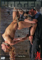 Hogtied: Dahlia In The Sky